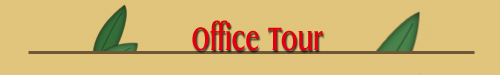 Pediatric Dentist - Las Vegas, NV - Todd S. Milne, D.D.S. - Office Tour